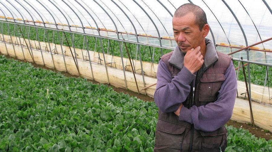 spinach-farmer-2_wide-e11b3323e34eea748aeeb181801b422c087285cd-s900-c85