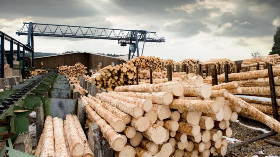 sawmill-lumber-mill